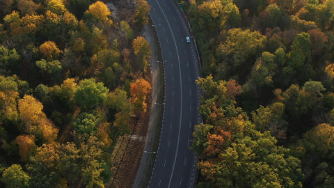 Epic aerial flight over autumn forest and road. Cars drive along the road along Live Action