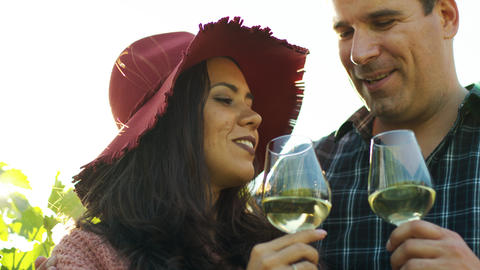 Beautiful couple tasting wine in lensflares Live Action