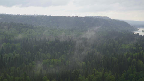 Above the coniferous forest in cloudy weather slowly rise evaporation Live Action