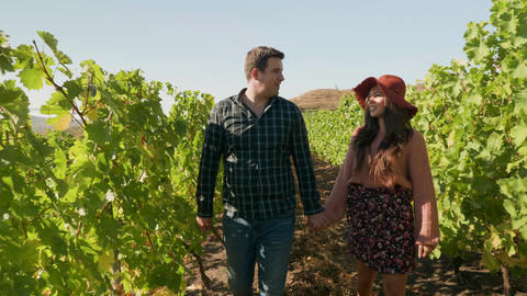 Beautiful caucasian couple walking holding hands in a vineyard Live Action