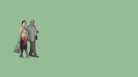Walk side Elderly couple stroll arm in arm, looking... Stock Video Footage
