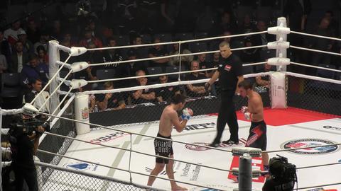 Orenburg, Russia - August 30, 2019: Men compete Mixed martial arts (MMA) – M - 1 Challenge 104 Live Action