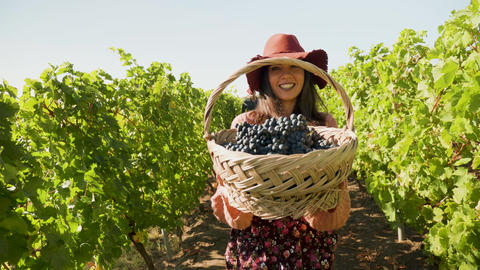 Smiling woman lifting a basket with grapes GIF