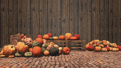 Autumn pumpkins on wooden background with copy space GIF
