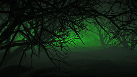 Halloween In Night Forests 01 4K Videos animados