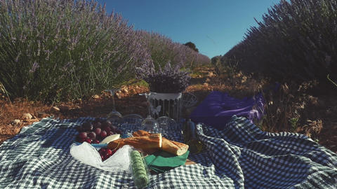 Gastronomic still life french picnic outdoors in lavender field Footage