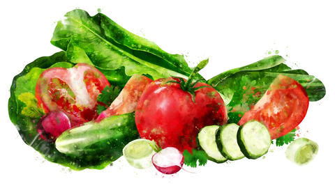 Watercolor appearance animation of the tomato, cucumber, salad and radish CG動画