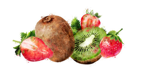 Watercolor appearance animation of the strawberry and kiwi on the alpha channel CG動画