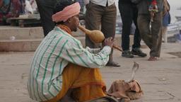 Indian snake charmer on ghats,Varanasi,India Footage