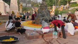 Pilgrims decorating structures with flowers,BodhGaya,Mahabodhi Temple,India Footage