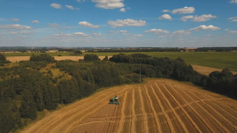Aerial view combine harvesting a field of wheat Footage