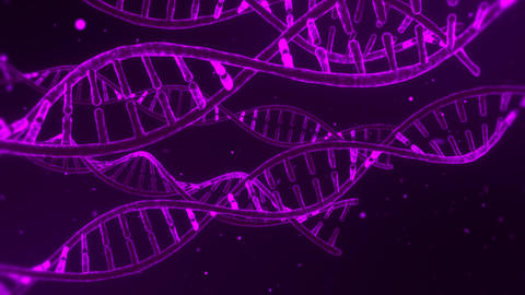 3D Purple DNA Spirals Animation Loop Motion Background Animation