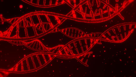 3D Red DNA Spirals Animation Loop Motion Background Animation