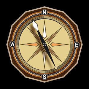 Compass spinning SVG animation Lottie