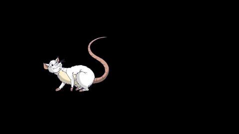 White rat falls asleep and wakes up animation Alpha Matte Videos animados