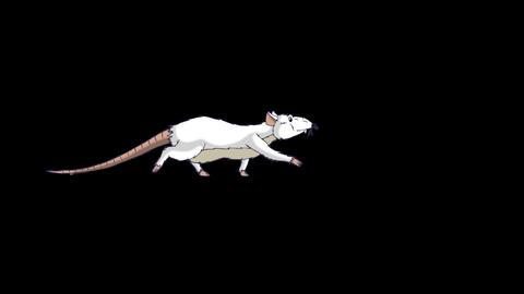 White rat sneaks animation Alpha Matte Videos animados