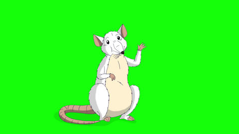 White rat greets and waves its paw animation Chroma Key Videos animados