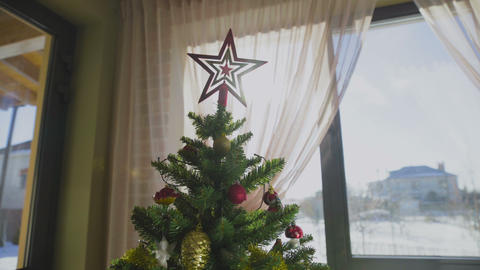 Close up on Christmas tree with star on top GIF