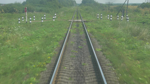 Railway Lines in Motion Green Grass and Bushes Background Live Action