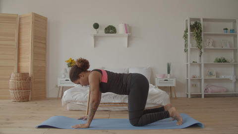 Graceful fitness woman doing cat cow pose indoors Footage