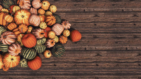 Autumn pumpkins on wooden background with copy space top view 3D Videos animados