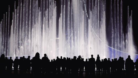 People silhouettes on a background bright color fountain. Group of people Live Action