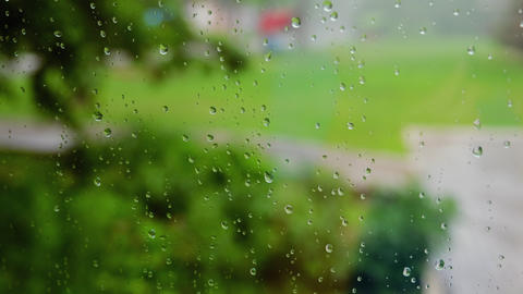 Rain drops flow down the surface of the glass against the background of juicy Live Action