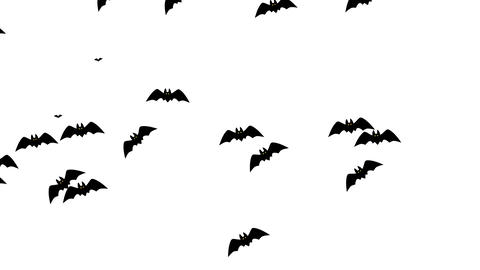 Swarm of Spooky Halloween Flat style Bats flying across White Background Animation