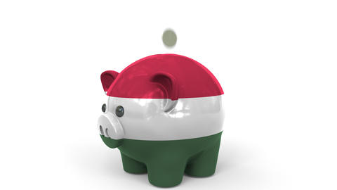 Coins fall into piggy bank painted with flag of Hungary. National banking system Live Action