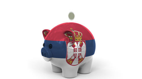 Coins fall into piggy bank painted with flag of Serbia. National banking system Live Action