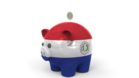 Coins fall into piggy bank painted with flag of Paraguay. National banking Live Action