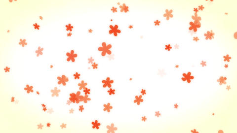 count down flower カウントダウン Animation