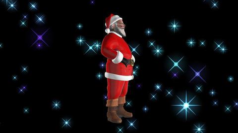 Festive Santa CG動画
