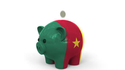 Coins fall into piggy bank painted with flag of Cameroon. National banking Live Action
