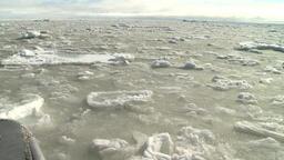 Arctic Ocean Sea Ice.
