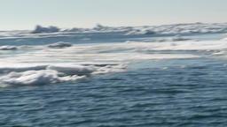 Arctic Ocean Sea Ice. 0