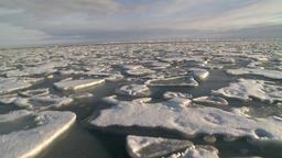 Arctic Ocean Sea Ice. 1