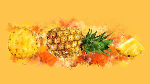 The appearance of the pineapple on a watercolor stain Animation