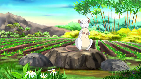 White Rat wishes a Happy Chinese New Year 2020 CG動画