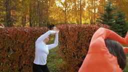 Fitness woman training yoga exercise at outdoor class in autumn park. Female Footage