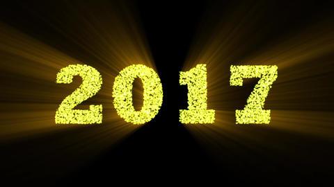 2017 year Animation