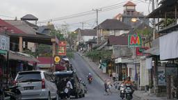 Monkey forest road,Ubud,Bali,Indonesia Footage