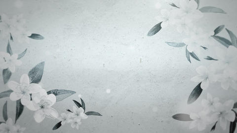 Closeup flowers, motion wedding background Animation