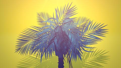 Closeup tropical palm trees, summer background CG動画