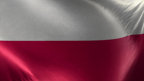 Flag of Poland 3D Loop Live Action
