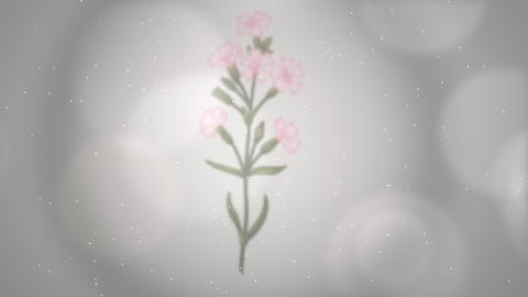 Closeup flowers, motion wedding background Videos animados