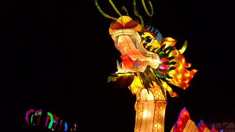 China new year decoration moving dragon with lights inside Live Action
