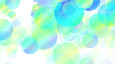 Bokeh01 white color yoko blue Animation