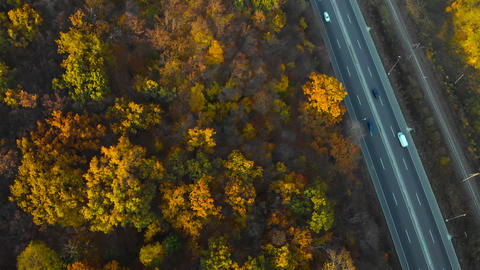 Top down view of autumn road car at autumn day Live Action