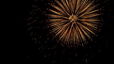 Fireworks celebrate for Christmas and New year Live Action